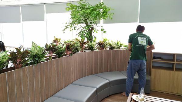 Ảnh thực tế: Xanh 365 thiết kế văn phòng xanh tại Công ty CP Công nghệ & Truyền thông SAMO-The Bank