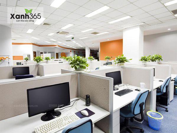 Cây xanh giúp nhân viên làm việc hiệu quả hơn