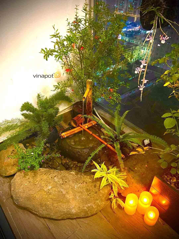 Chậu tiểu cảnh bể cá Vinapot