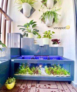 Chậu gỗ nhựa bể cá Vinapot